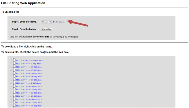 Step 4: Once you are logged in, click Choose file