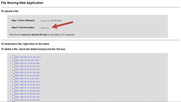 Step 6: Click the Upload File button.